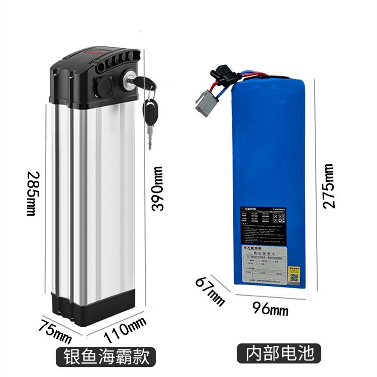 天能银鱼锂电池48V12ah海霸爱玛雅迪20AH通用
